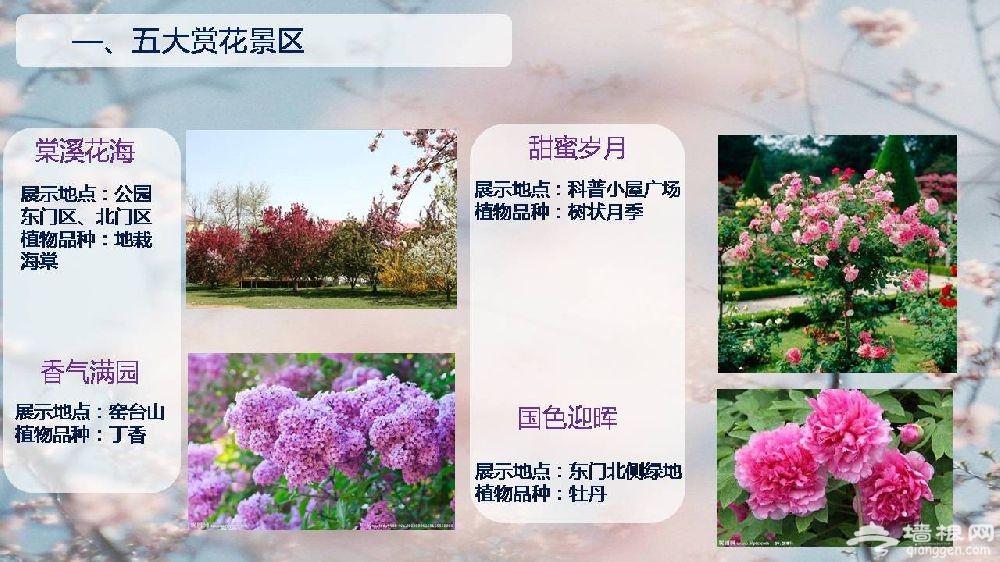 2019北京陶然亭公园海棠春花文化活动时间、门票及看点[墙根网]