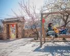 北京这个小村落,美成世外桃源,现在去刚好!