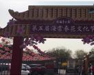 北京陶然亭公园海棠春花文化活动今开幕 观赏路线推荐