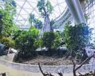 北京世园会月底即将开幕 核心景区四大场馆有哪些看点和亮点?