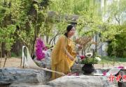 當櫻花遇到中國茶 首屆玉淵潭櫻花茶會舉行