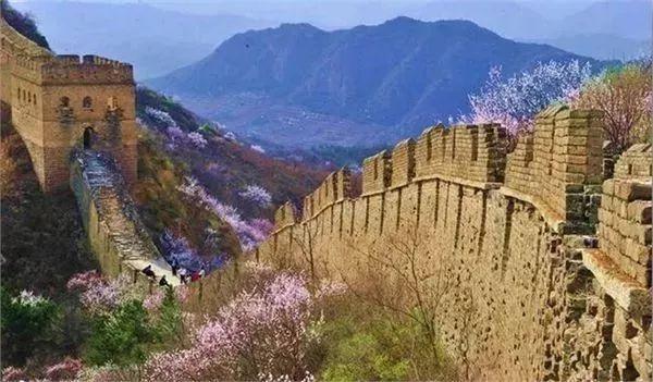 2019年金山岭长城杏花节(时间+门票+赏花线路)[墙根网]