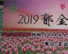 2019北京世界花卉大观园郁金香文化节(时间+门票)