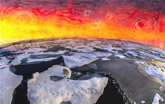保护极地海洋 壮美极境海洋公益影像巡展空降上海