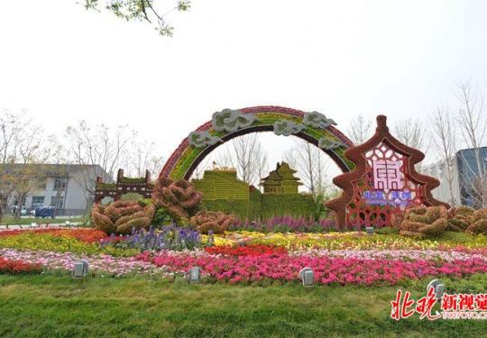 世园·打卡北京16区主题花坛:一日看尽北京园各区艺特色