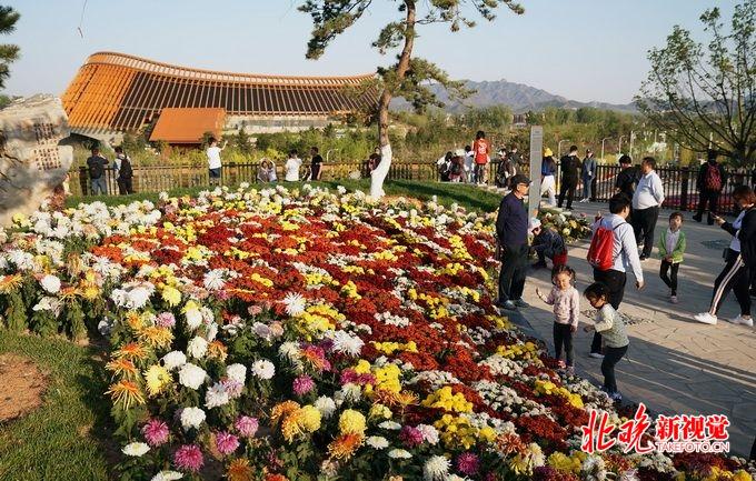 """看看世园会里北京的绿水青山 顺义展区花海将""""保鲜""""160天[墙根网]"""
