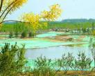 通州大型森林游憩园明年完工 规模相当于2.5个奥森