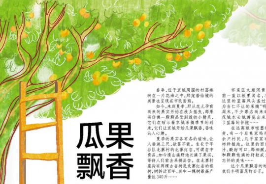 """北京瓜果飘香 北寨红杏""""明星""""蓝莓等您采摘"""