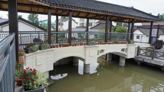 """上海唯一那片""""水上森林""""7月10日起重新免费开放[墙根网]"""