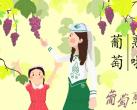 北京葡萄采摘