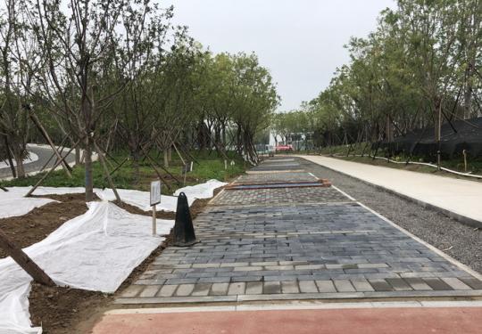 """温榆河公园一期示范区明年5月开放 建成后将成北京最大""""绿肺"""""""