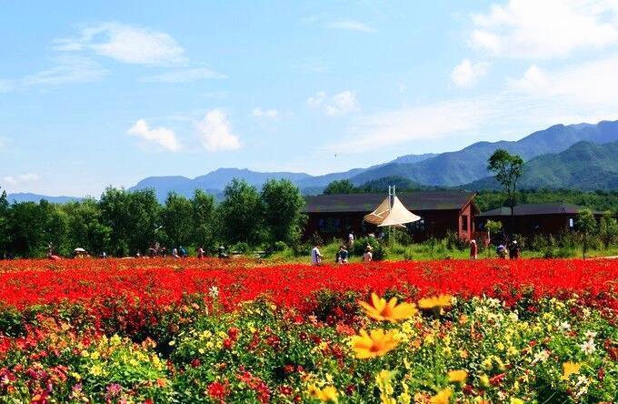"""最适合秋天北京周边自驾的5条山路,秋景一个比一个美,自驾游爱好者的""""天堂""""[墙根网]"""
