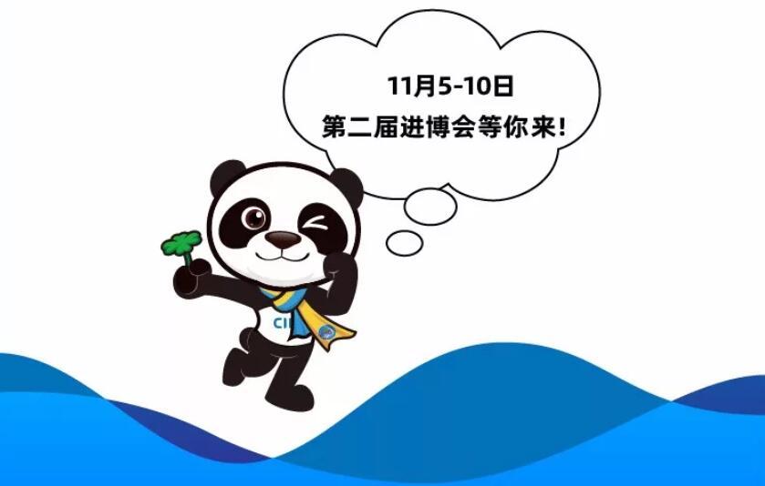 一图看懂2019第二届进博会吃住行购[墙根网]