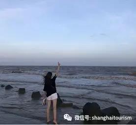 不出上海,一样能听见海的声音![墙根网]