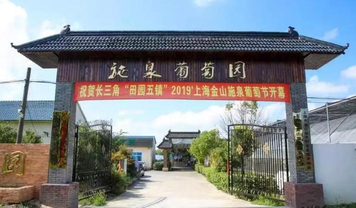 2019上海第七届金山施泉葡萄节时间+地点+交通[墙根网]