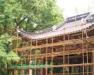 上海汇龙潭公园9月重新开放 440只雕刻鸟雀等你来参观