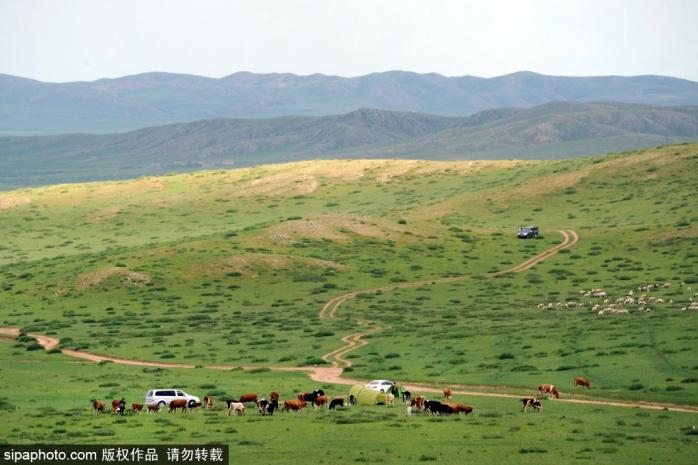 今年再不去看只能等明年!北京一路向北,蓝天、白云、清风,壮美草原等您来![墙根网]