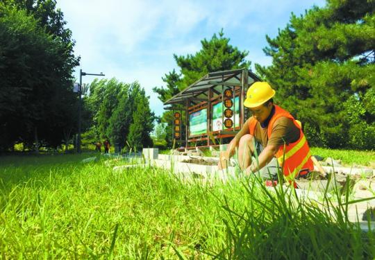 昌平将增9条健走步道,总长度10.1公里,5条位于回天地区