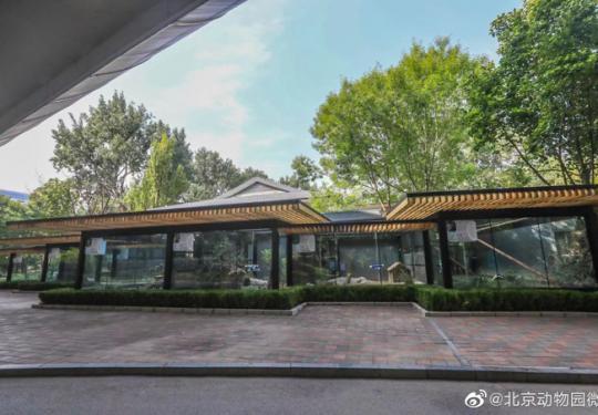 北京动物园小型动物运动场将开馆 11种杂食小动物将入住