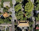 潭柘寺柘树文化节开幕,重现千嶂绿色生态景观
