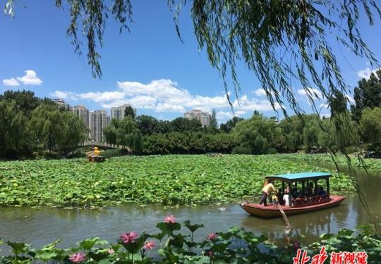 紫竹院公园筠石苑景区国庆亮相,7.1公顷土地上有这些景点