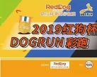 2019红狗杯DOGRUN彩跑上海站活动时间+地点+费用