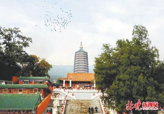 八大处馆藏文物首展,丝路与红色文物助阵