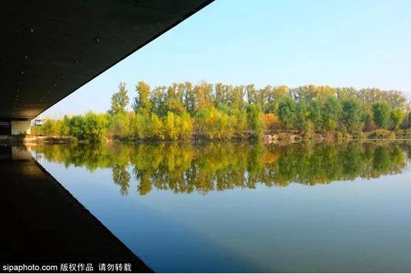 一步一景美到哭!北京秋游地图请收好,看完就出发![墙根网]