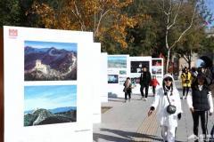 八达岭,红了!登临长城就可以首览北京金秋红叶初芒
