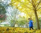 玉渊潭公园推出7大赏秋景点