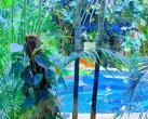 温泉不输北海道,阳光丽城热带雨林温泉给您别样享受