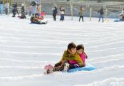 【西城·冰雪】39元起抢购!陶然亭冰雪嘉年华门票、平日雪圈套票、滑雪票