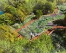 冬奥森林公园明年底开园迎客!占地480亩,可穿越公园进赛区