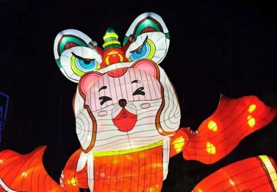 【自助取票机】南宫五洲植物园新年灯光狂欢夜,儿童畅玩游乐票无限次数畅玩