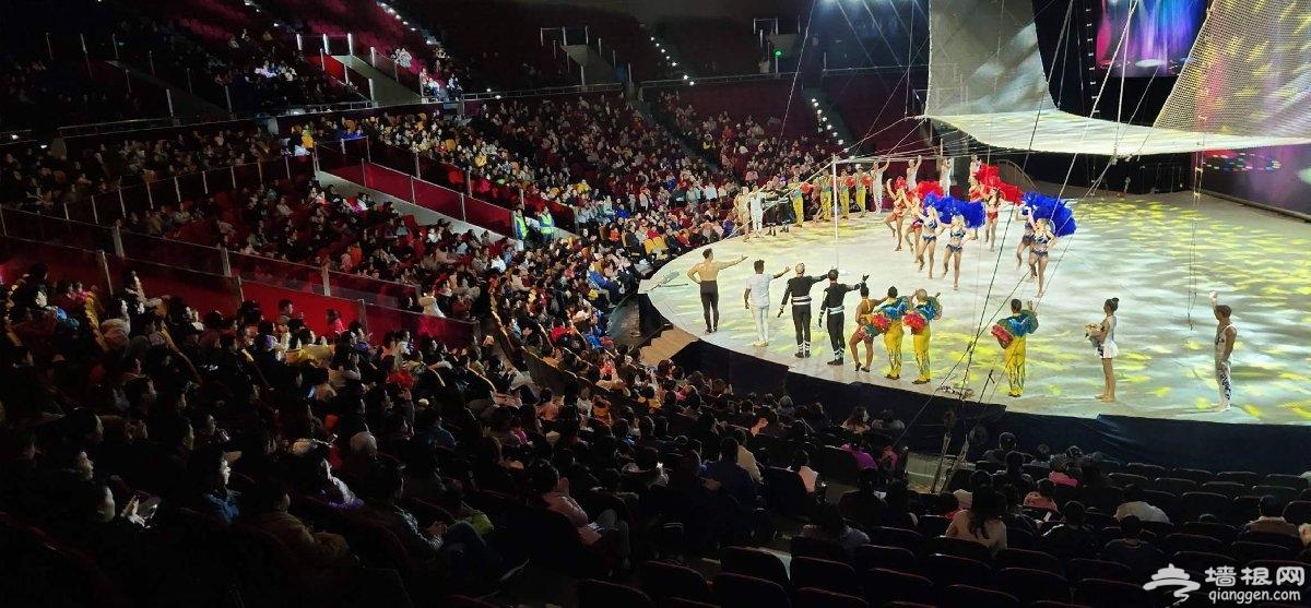 上海欢乐谷神奇马戏团演出时间+地点+门票