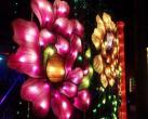 2020北京南宫新年灯光狂欢夜(时间+门票+活动内容)