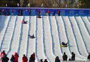 2020第三屆紫竹院公園歡樂冰雪季攻略(時間+門票+活動)