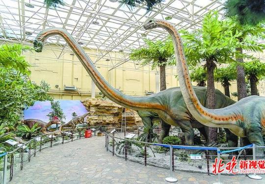"""北京自然博物馆还原真实场景的""""恐龙乐园"""",还能展示整个自然生物界"""