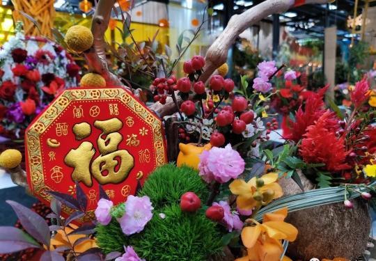 """2020年迎春年宵花展来了!多肉植物、蝴蝶兰、蟹爪兰成""""主力"""""""