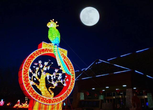万盏花灯点亮元宵夜,北京多家公园推出网上看灯[墙根网]