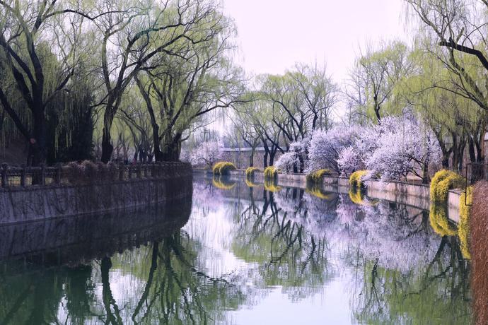 云游中国颐和园:春色满园关不住[墙根网]