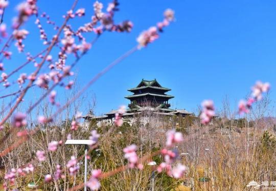 4月踏春寻花,就来北京世园会园区