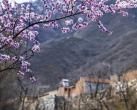 向往的生活——京郊深山里的绝美民俗村