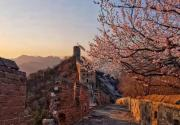 金山岭赏花 驻足金山岭的春光里,寻找历史的脉动