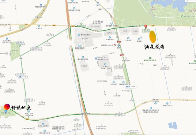 大兴区瀛海镇500多亩油菜花已经悄然盛放!坐地铁就能去[墙根网]