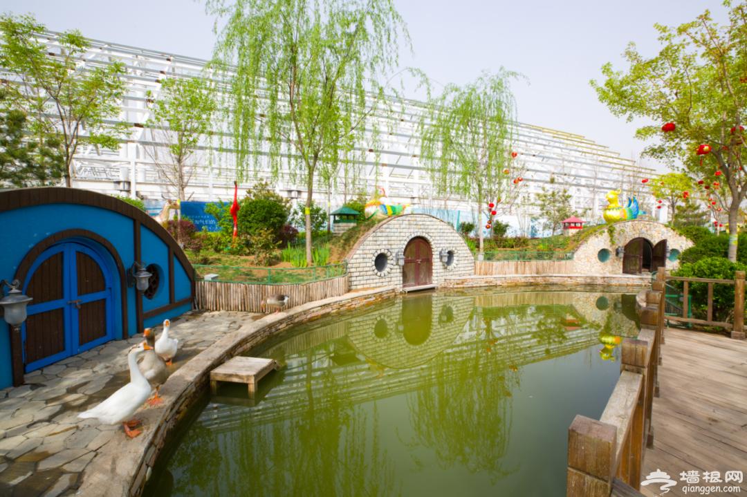 关于北京南宫五洲植物乐园有序恢复开放的公告[墙根网]