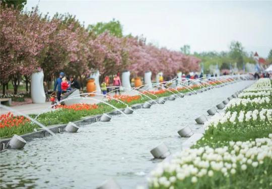 开船啦!即日起北京国际鲜花港、北京奥林匹克水上公园游船正式开航!