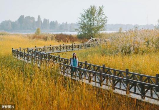 永定河补水,盘点北京受益最大的几个湿地,人少景美还适合野餐
