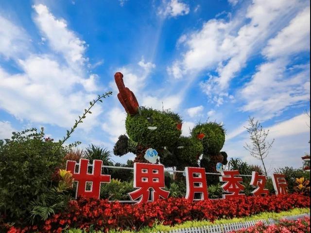 2020北京月季文化节在大兴开幕 精彩将持续一个月[墙根网]