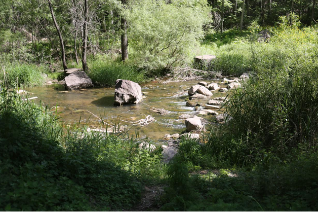 西帽山原始露营公园:大自然有赠诗一首,等你来读[墙根网]